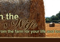 Friday's With the Farmer's Wife:  Do What You Love and Love What You Do